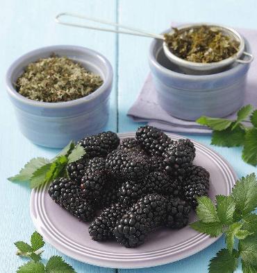 OEM Factory Supply Healthy herbal Tea Wolfberry Tea