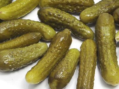 Best Canned Gherkins / pickled cucumber/ gherkins in drums